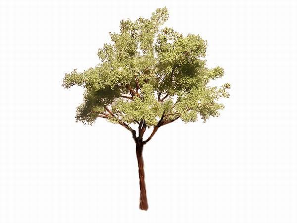 Come realizzare un albero con del filo elettrico
